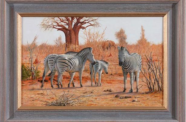 Zebras above the Chobe River, Botswana
